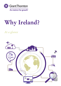 guide to capital gains tax ireland