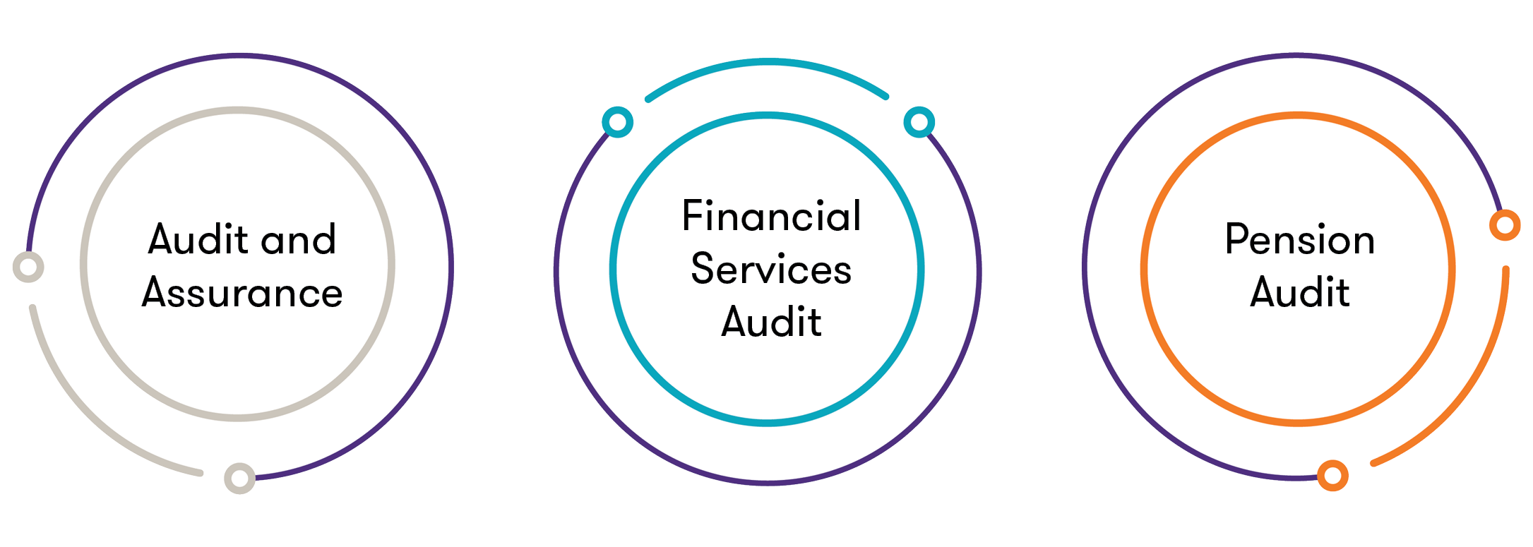 Audit services USE.png